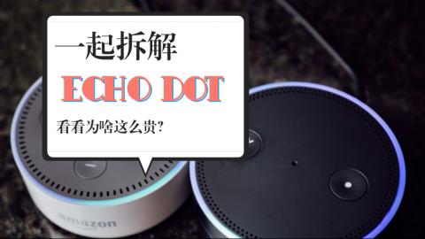 拆大神又来啦!一起拆解Echo Dot看看为啥那么贵?