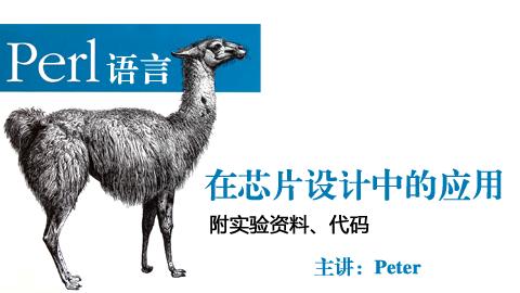 Perl语言在芯片设计中的应用
